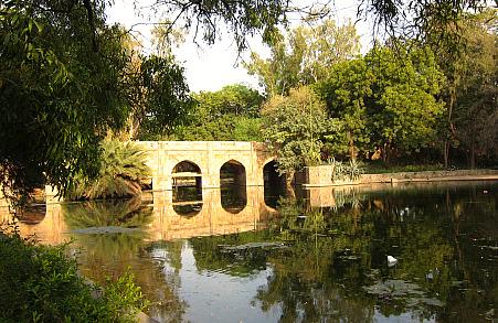 Lodhi Garden pond
