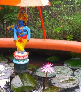 photograph of Krishna at Sivananda Ashram, Kerala, India