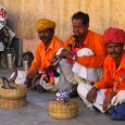 photograph of snake charmers in Jaipur, India,