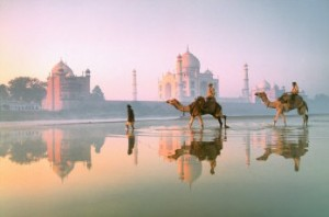 Photograph of Taj Mahal, Camels, India