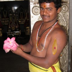Photograph of Hindu Pandit with lotus flower in Bangalore / Bengaluru