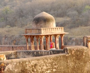 Photograph of the fort, Ranthambhore national park and tiger reserve, Rajasthan, India