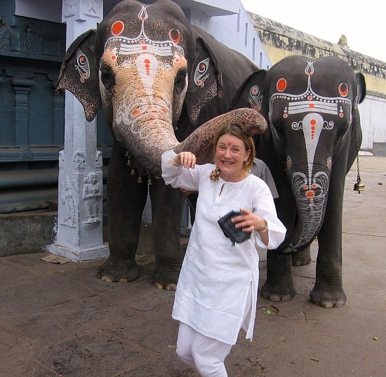 Photograph of Mariellen Ward with temple elephants in Tamil Nadu, 2006