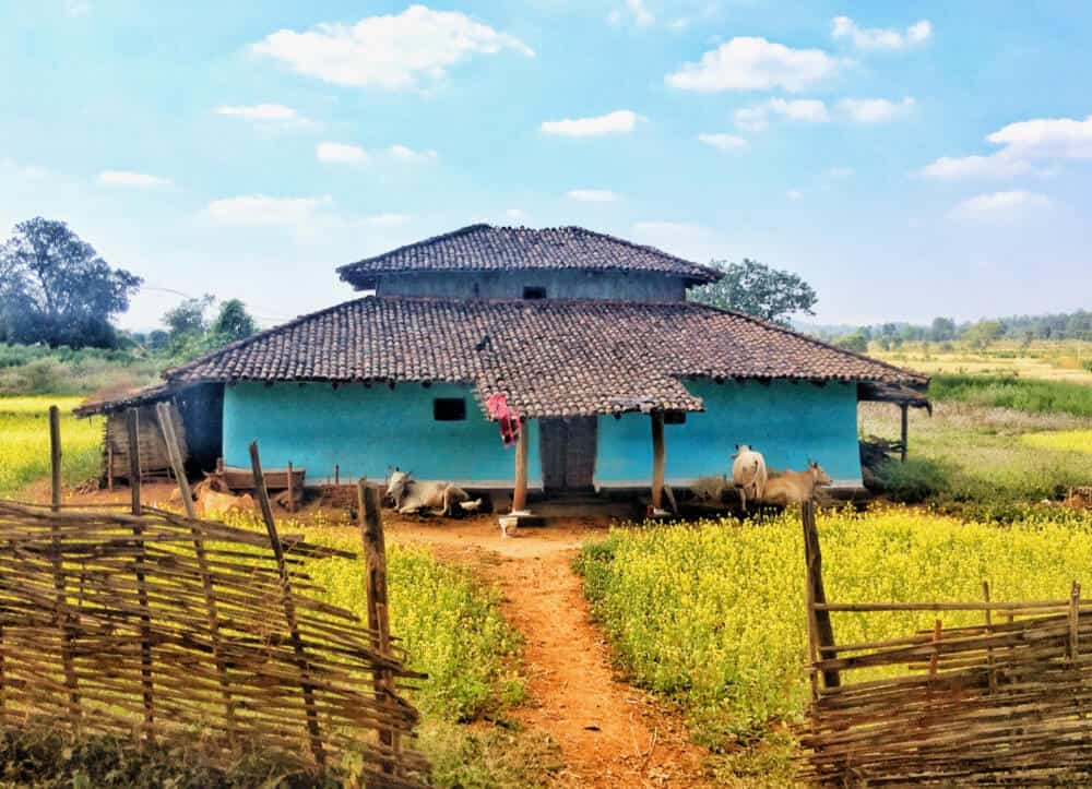 blue house in rural India