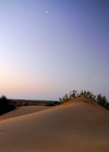 Photograph of Thar Desert