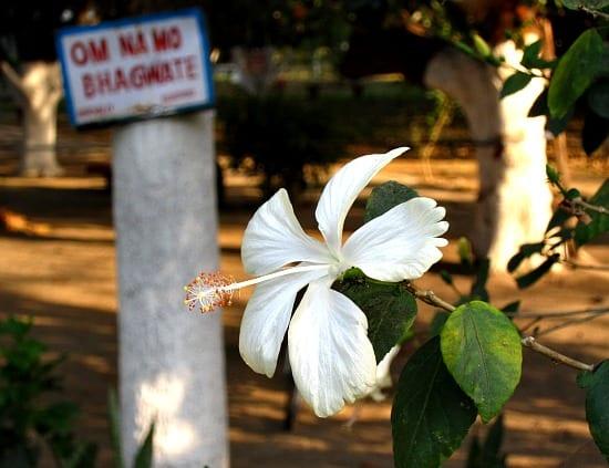 Photograph of Aurovalley Ashram, Rishikesh, India