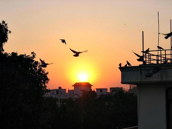 Sunset from the terrace in Delhi, 2005