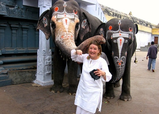 Elephant blessing in Kancheepuram, Tamil Nadu, India