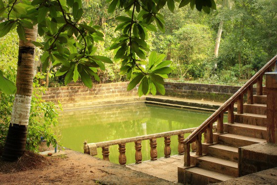 Of spice and sun: Travel tales in Odisha