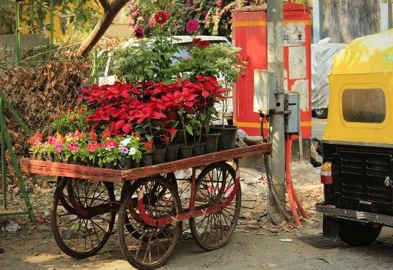Christmas in India: poverty, Delhi gang rape, Mumbai