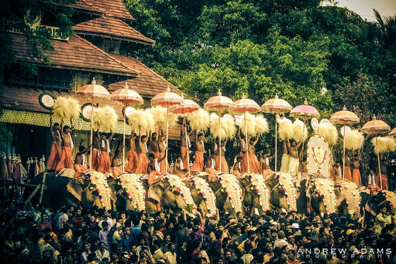 Thrissur Pooram Festival - Travel Photographer Andrew Adams