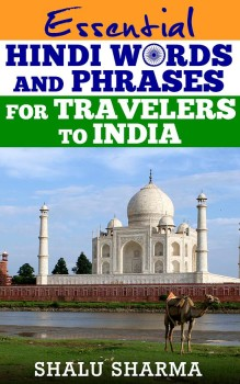 Learn basic Hindi phrase for travel in India