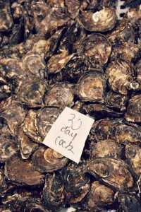 PEI malpeque oysters