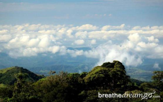 Monteverde Coud Forest Costa Rica