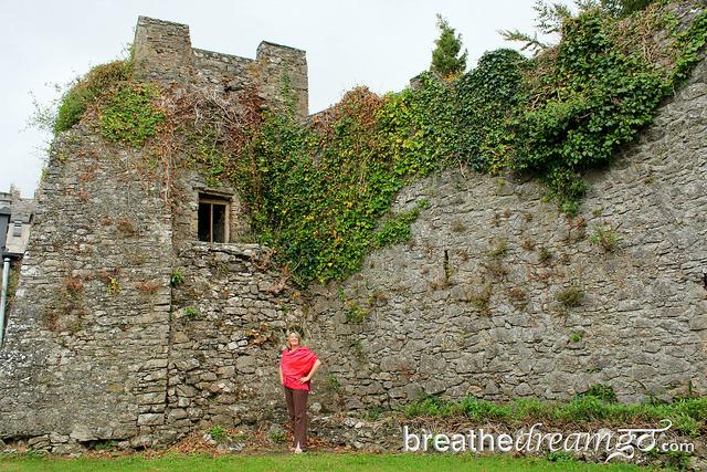 Mariellen Ward Castle Cork, Ireland The Gathering