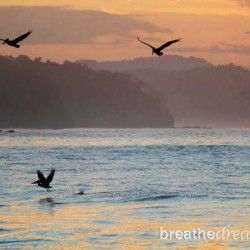 Sunrise and pelicans at Punta Islita, Costa RIca.