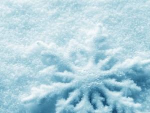 snowflake snow winter Canada