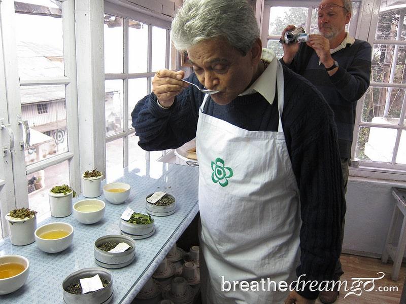 Rajah Banerjee, tea, Darjeeling, Makaibari