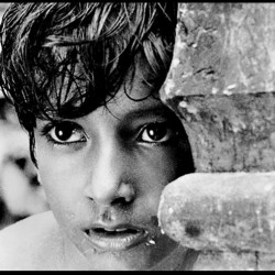 Pather Panchali, Apu Trilogy, The World of Apu, Satyajit Ray, India, film, cinema, Bengal, Bengali,