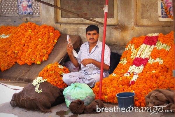 flower seller, market, Delhi, India