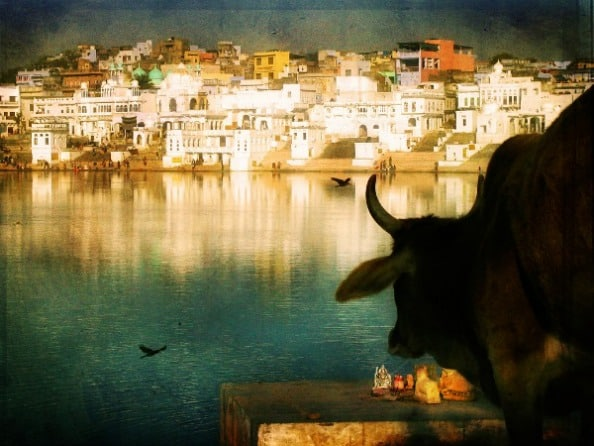 Avoiding the sacred cows in travel writing