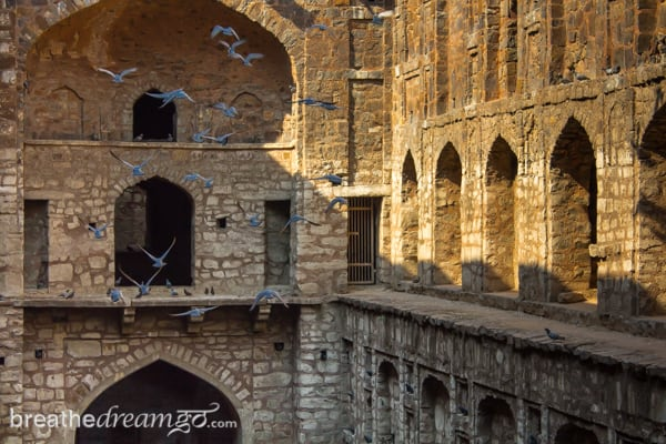 India, India travel, travel in India, solo female travel, Ugrasen ki Baoli, Delhi,