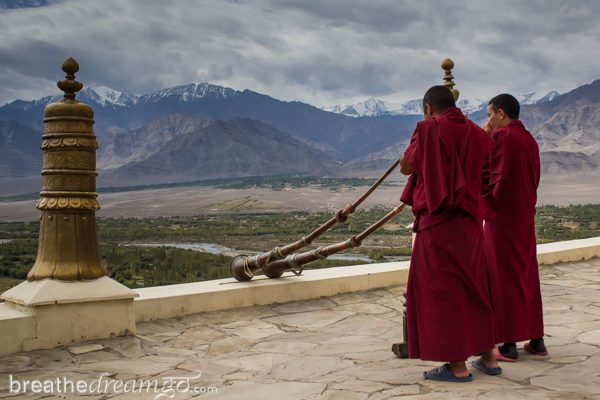 Ladakh, India, India travel, travel in India, solo female travel, Buddhism. monastery, Tibet, Thiksey
