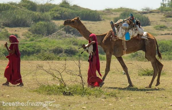 Mirabai, Krishna, India, travel, journey, woman, women, solo, Meera, Meerabai, music, Dwarka, Gujarat, temple, sun rise, ghats