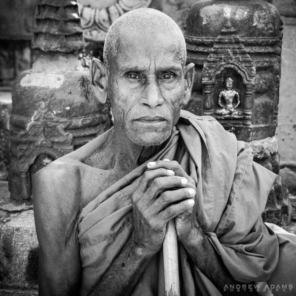Buddhist Conclave 2014, India, Buddhism, Buddha, monks, Bodhgaya, Sarnath