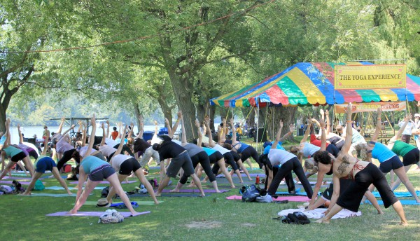 Yoga Meltdown at the Festival of India, Toronto, yoga