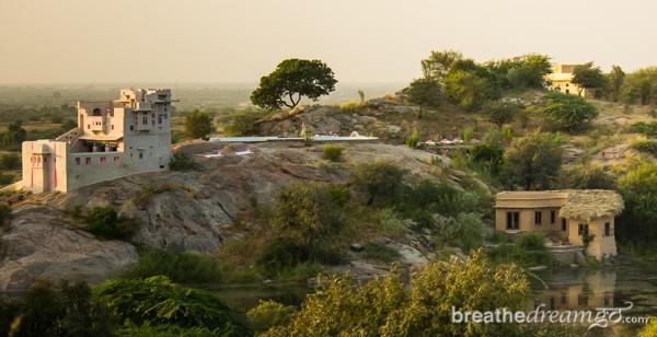Lakshman Sagar, Rajasthan, India, hotel, resort, luxury, pool, bird watching, food, nature, birds, lake, desert
