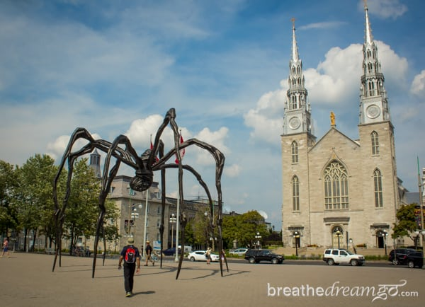 Canada, Canadian, Ottawa, citizen, Parliament, capital, trip, travel, tourist, National Gallery of Canada, spider