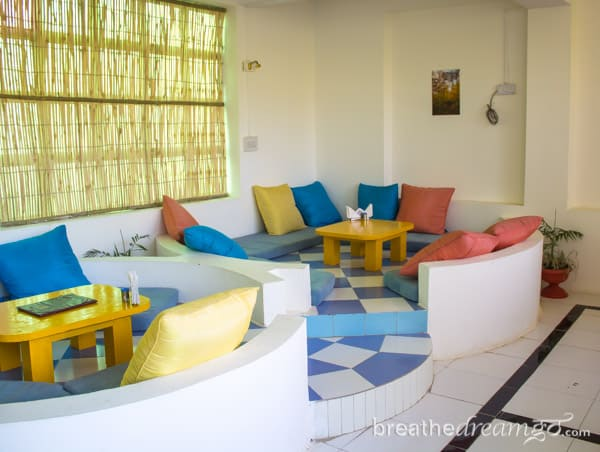 Zostel, hostel, cheap, budget, friendly, hotel, accommodation, India, travel, Pushkar, Rajasthan, Camel Fair