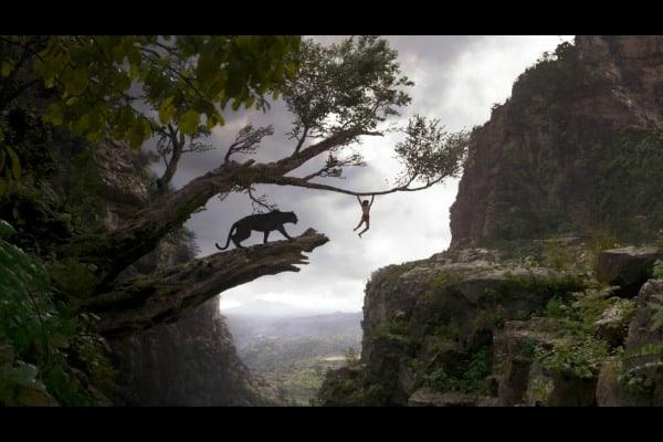 The Jungle Book, India, Madhya Pradesh, Kanha, national park, wildlife, sanctuary, Disney, film, movie