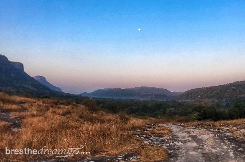 tiger, tigers, India, travel, tour, tourist, park, reserve, Pugdundee, safari, safaris, Bandhavgarh, Madhya Pradesh,