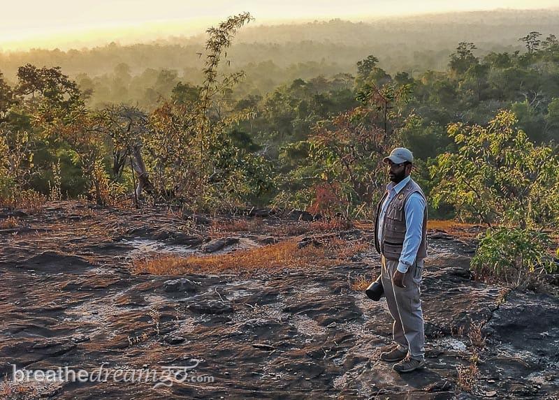 tiger, tigers, India, travel, tour, tourist, park, reserve, Pugdundee, safari, safaris, Kanha, Bandhavgarh, Pench, Madhya Pradesh