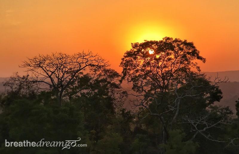 tiger, tigers, India, travel, tour, tourist, park, reserve, Pugdundee, safari, safaris, Kanha, Bandhavgarh, Pench, Madhya Pradesh, Kanha Earth Lodge