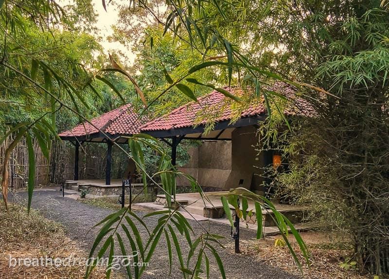 tiger, tigers, India, travel, tour, tourist, park, reserve, Pugdundee, safari, safaris, Kanha, Bandhavgarh, Pench, Madhya Pradesh, Pench Tree Lodge