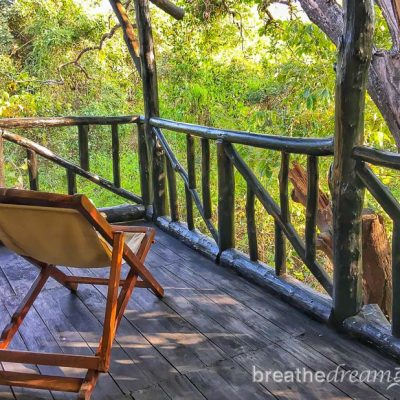 Pugdundee Safaris Lodges: Home base for tiger safaris in India
