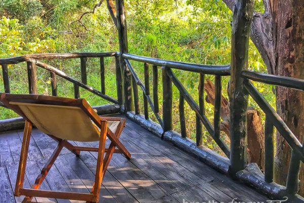 tiger, tigers, India, travel, tour, tourist, park, reserve, Pugdundee, safari, safaris, Kanha, Bandhavgarh, Pench, Madhya Pradesh, Tree House Hideaway