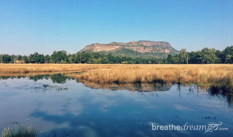 Breathedreamgo, India, travel, responsible, sustainable, tour, trip, blog, blogging, Bandhavgarh, national park, park, tiger, reserve, sanctuary, animal