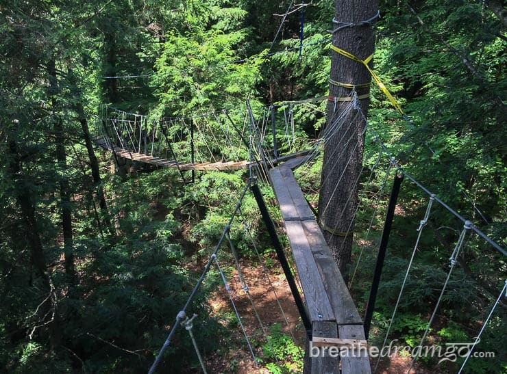 things to do in Ontario, Haliburton forest, Ontario getaways