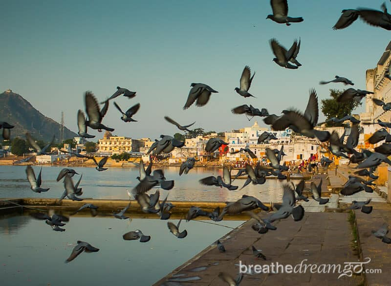 Pushkar is a peaceful, sacred town in Rajasthan, India popular with travellers and pilgrims alike. It's a great place for a first time visitor to India. Sunset and sunrise are the best times to enjoy the sublime beauty of the lake.