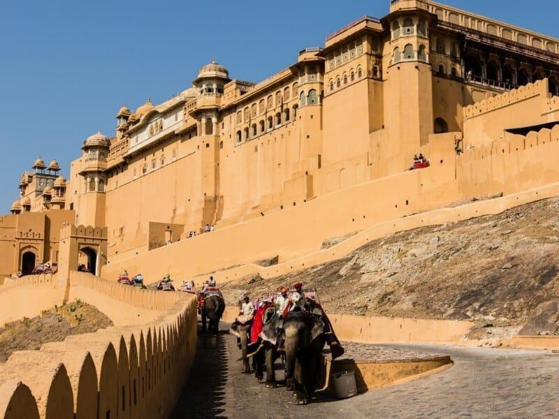 The elephant ride to Amber Fort, Jaipur, Rajasthan, India #WorldElephantDay #IndianElephants