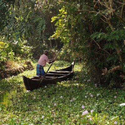 On the Kumarakom Backwaters, Kerala