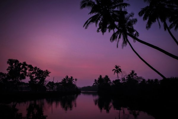 Evening on the Kumarakom Backwaters, Kerala.