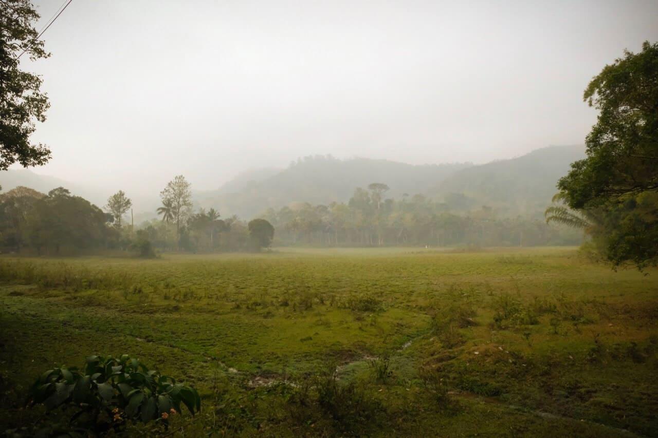 Periyar Tiger Reserve, Kerala