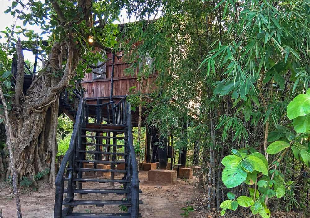 Tree house hotel at Bandhavgarh National Park Tiger Reserve