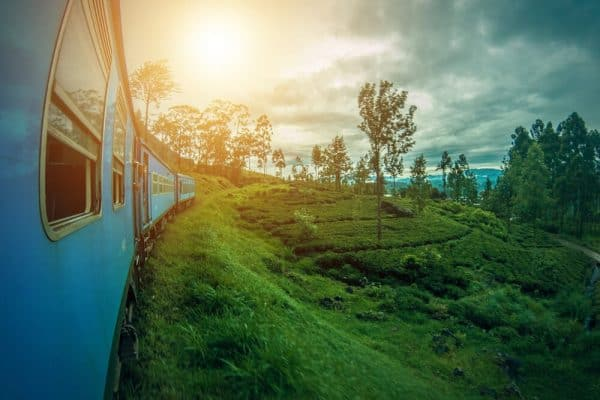 Sri Lanka train through tea plantations