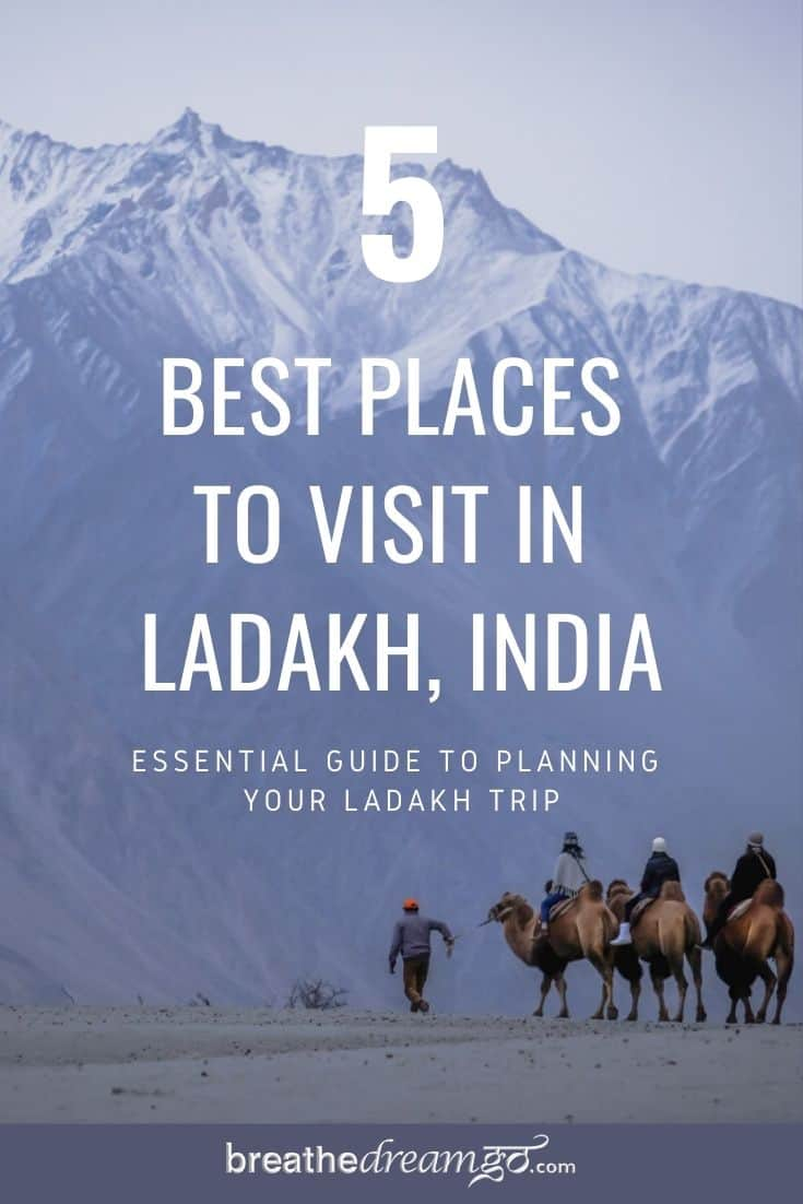 Essential Guide to planning your Ladakh Trip Pinterest Pin with camels and mountains
